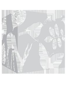 Wedstrijd-logo